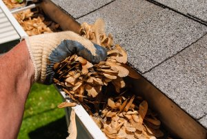 Gutter Cleaning in Ogden